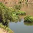 gestauter Snake River