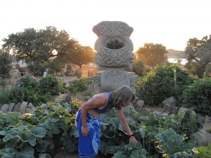 überall fürs Festival Kräuter- und Gemüsegärten angelegt;- die jetzt Früchte trugen!