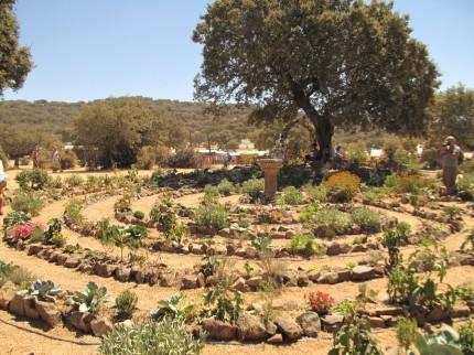 mit viel Liebe angelegter Kräutergarten