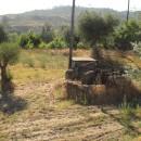 alte Ölmühle