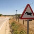 sehen in Portugal wieder etwas anders aus