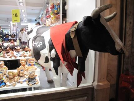 für Janne, Kuh schaut durch´s Schaufenster